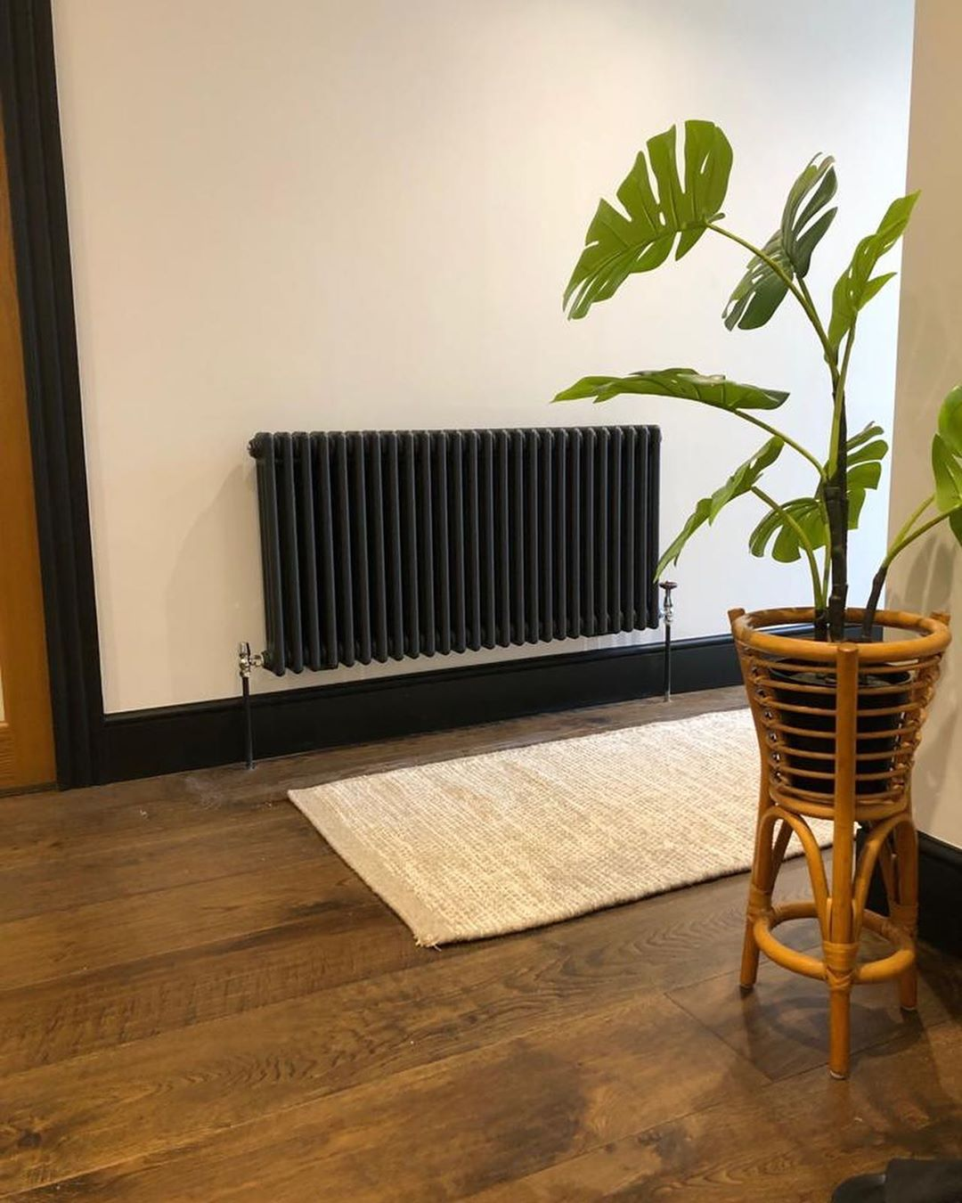 anthracite column radiator next to a plant