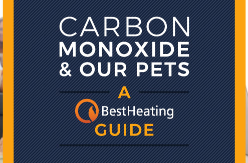 header image for carbon monoxide and pets article