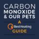 header image for carbon monoxide and pets article